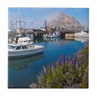 USA, California. Docked Boats At Morro Bay Tile