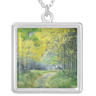 USA, California, Eastern Sierra Mountains. Silver Plated Necklace