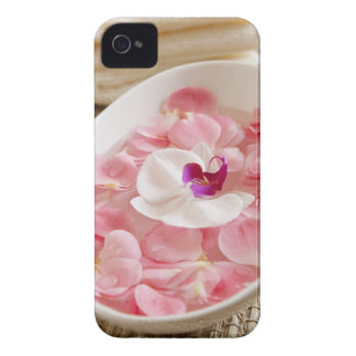 USA, California, Fairfax, Bowl of petals by Case-Mate iPhone 4 Cases