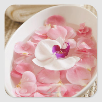 USA, California, Fairfax, Bowl of petals by Square Sticker