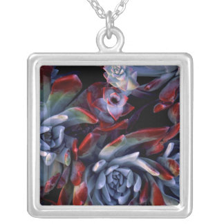 USA, California, Garrapata State Park Silver Plated Necklace