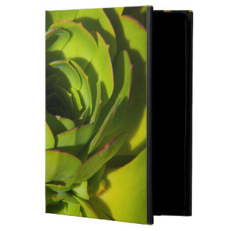 USA, California. Giant Lobelia Plant Close Up Case For iPad Air