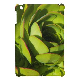 USA, California. Giant Lobelia Plant Close Up Cover For The iPad Mini