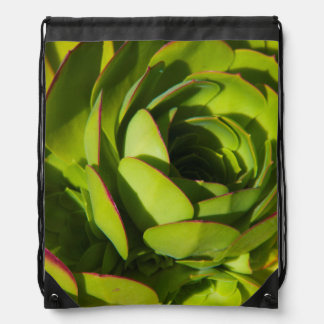 USA, California. Giant Lobelia Plant Close Up Drawstring Bag