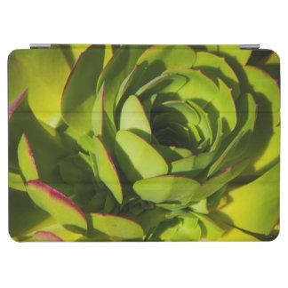USA, California. Giant Lobelia Plant Close Up iPad Air Cover