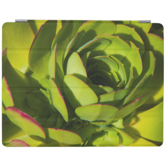 USA, California. Giant Lobelia Plant Close Up iPad Cover
