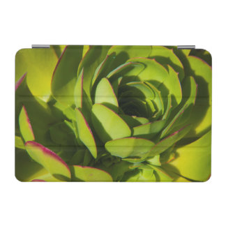 USA, California. Giant Lobelia Plant Close Up iPad Mini Cover