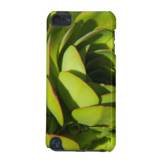 USA, California. Giant Lobelia Plant Close Up iPod Touch (5th Generation) Case