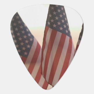 USA, California, Gold Country, Amador City: Guitar Pick