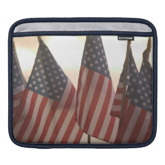 USA, California, Gold Country, Amador City: iPad Sleeve