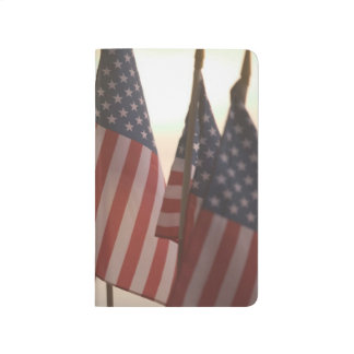 USA, California, Gold Country, Amador City: Journal
