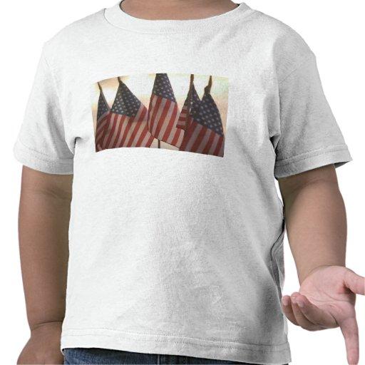 USA, California, Gold Country, Amador City: Shirts
