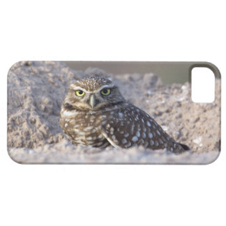 USA - California - Imperial County - Salton Sea Case For The iPhone 5