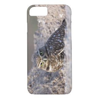 USA - California - Imperial County - Salton Sea iPhone 8/7 Case