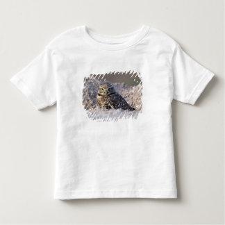 USA - California - Imperial County - Salton Sea Toddler T-Shirt