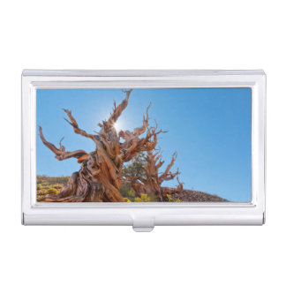USA, California, Inyo National Forest 10 Business Card Holder