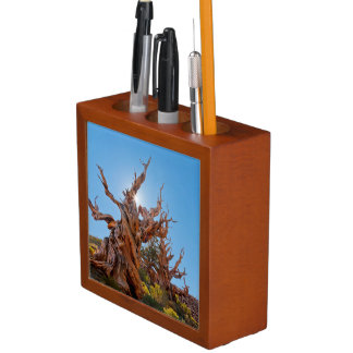 USA, California, Inyo National Forest 10 Desk Organiser