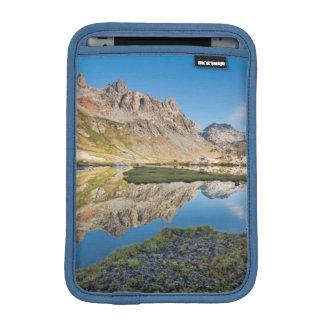 USA, California, Inyo National Forest 11 iPad Mini Sleeve