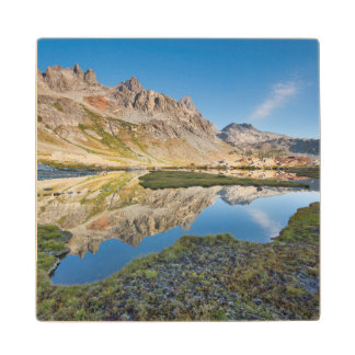 USA, California, Inyo National Forest 11 Wood Coaster