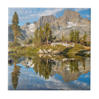 USA, California, Inyo National Forest 13 Tile