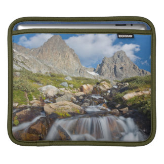 USA, California, Inyo National Forest 14 iPad Sleeve