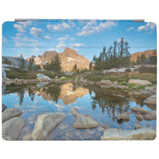 USA, California, Inyo National Forest. 2 iPad Cover