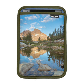 USA, California, Inyo National Forest. 2 iPad Mini Sleeve