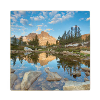 USA, California, Inyo National Forest. 2 Wood Coaster