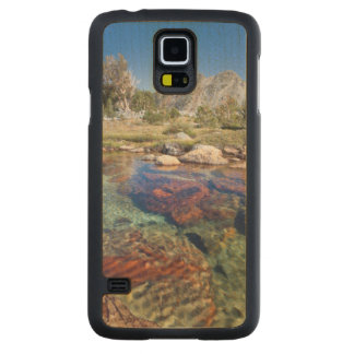 USA, California, Inyo National Forest 4 Carved Maple Galaxy S5 Case