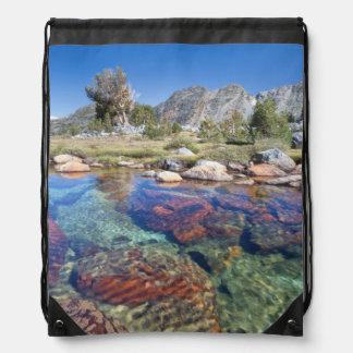 USA, California, Inyo National Forest 4 Drawstring Bag
