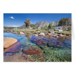USA, California, Inyo National Forest 4 Greeting Card