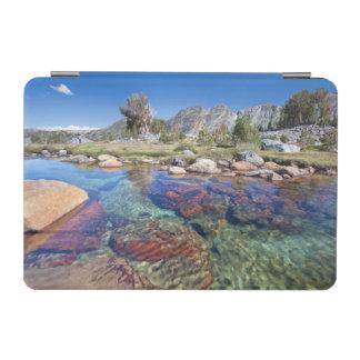 USA, California, Inyo National Forest 4 iPad Mini Cover