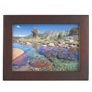 USA, California, Inyo National Forest 4 Keepsake Box