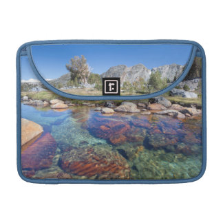 USA, California, Inyo National Forest 4 Sleeve For MacBook Pro