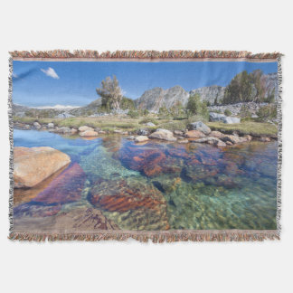 USA, California, Inyo National Forest 4 Throw Blanket