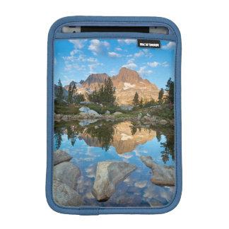 USA, California, Inyo National Forest 5 iPad Mini Sleeve