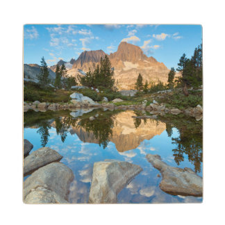 USA, California, Inyo National Forest 5 Wood Coaster