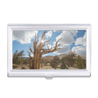 USA, California, Inyo National Forest 6 Business Card Holder
