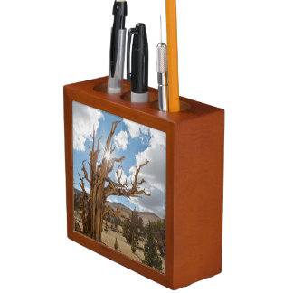 USA, California, Inyo National Forest 6 Desk Organiser