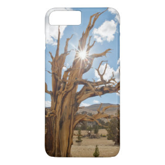 USA, California, Inyo National Forest 6 iPhone 8 Plus/7 Plus Case
