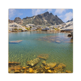 USA, California, Inyo National Forest 8 Wood Coaster