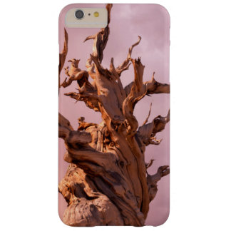 USA, California, Inyo National Forest 9 Barely There iPhone 6 Plus Case