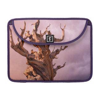 USA, California, Inyo National Forest 9 MacBook Pro Sleeve