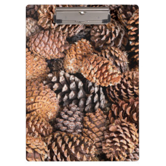 USA, California, Inyo National Forest Clipboard