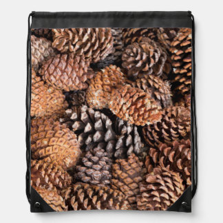USA, California, Inyo National Forest Drawstring Bag