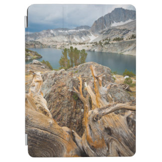 USA, California, Inyo National Forest. iPad Air Cover