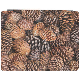 USA, California, Inyo National Forest iPad Cover