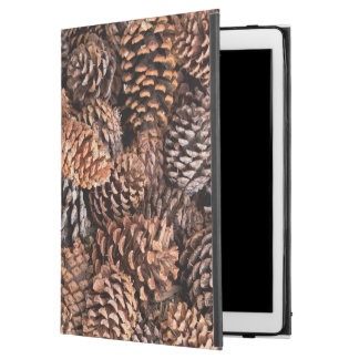 "USA, California, Inyo National Forest iPad Pro 12.9"" Case"