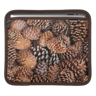 USA, California, Inyo National Forest iPad Sleeve