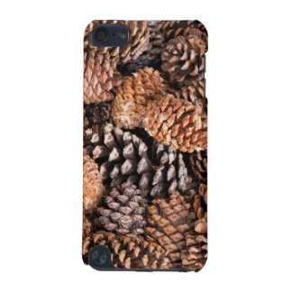 USA, California, Inyo National Forest iPod Touch 5G Case